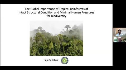 Thumbnail for entry The global importance of tropical rainforests of intact structural condition and minimal human pressures for biodiversity. Dr. Rajeev Pillay, Postdoctoral Fellow, UNBC - October 30 2020