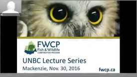 Thumbnail for entry Forest Management and the Migratory Bird Convention Act in Interior BC - November 30 2016 - Dr. Kari Stuart-Smith, Canfor
