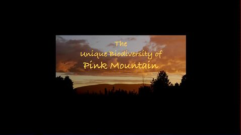 Thumbnail for entry The Unique Biodiversity of Pink Mountain - October 14 2016 - Ron Long, Pink Mountain Biodiversity Initiative
