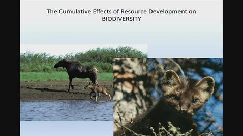 Thumbnail for entry The Cumulative Effects of Resource Development on Biodiversity. Honorable Mike Morris, MLA Prince George-Mackenzie - October 11 2019