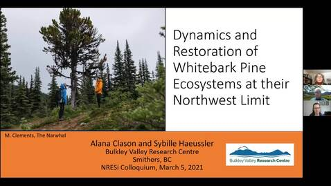 Thumbnail for entry Dynamics and Restoration of Whitebark Pine Ecosystems at their Northwest Limit -  Sybille Haeussler and Alana Clason - March 5 2021