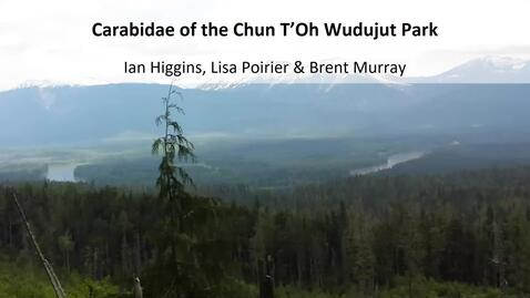 Thumbnail for entry An Overview of Three Terrestrial Invertebrate Surveys on BC Central Interior Plateau -  Dr Lisa Poirier - UNBC - Sept 18 2020