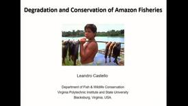 Thumbnail for entry Degradation and Conservation of Amazon Fisheries - Dr. Leandro Castello, Virginia Polytechnic Institute and State University - October 29 2018