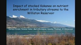Thumbnail for entry NRESi Colloquium and Annual Awards Ceremony; Impact of stocked kokanee on nutrient enrichment in tributary streams to the Williston Reservoir - Dr. Mark Shrimpton, UNBC
