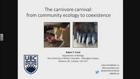 Thumbnail for entry The carnivore carnival: from community ecology to coexistence. Dr. Adam Ford, University of British Columbia, Okanagan - March 23 2018