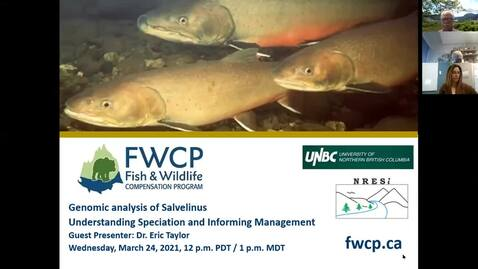 Thumbnail for entry Genomic analysis within Salvelinus - understanding speciation and informing management - Dr. Eric Taylor - UBC - March 24, 2021