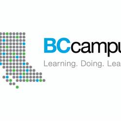 Thumbnail for channel BCcampus