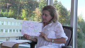 Gail KrivelZacks on Concept Mapping